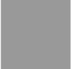 70D Gray FR Import Ripstop